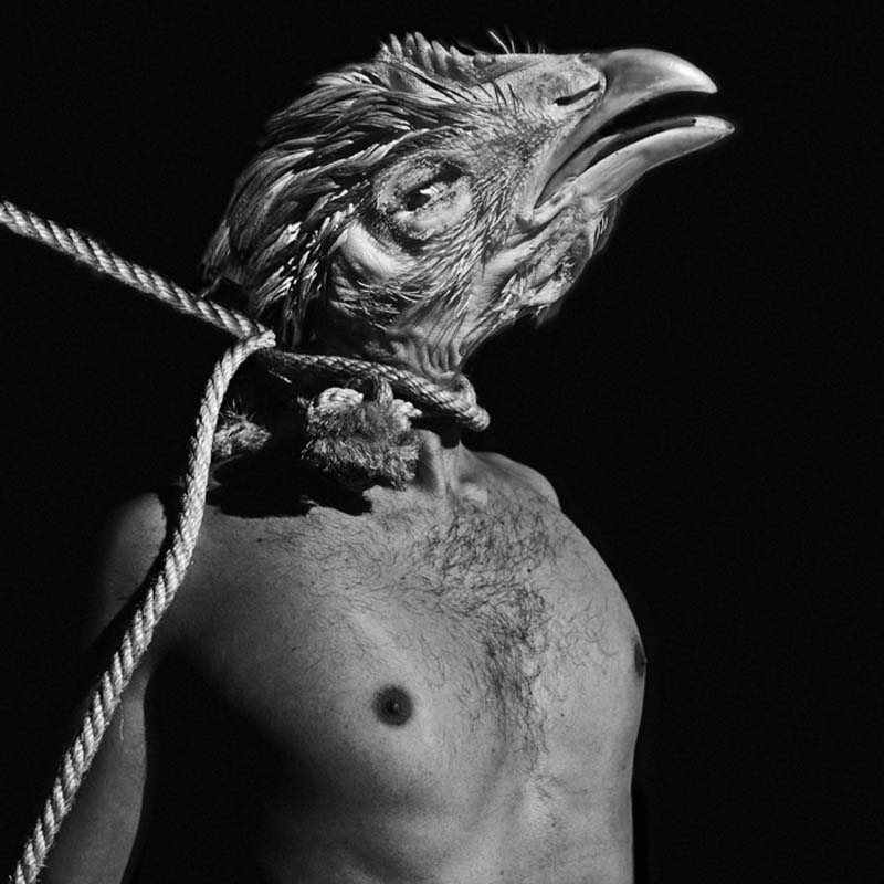 Photo called Chicken Head by Gonzalo Benard