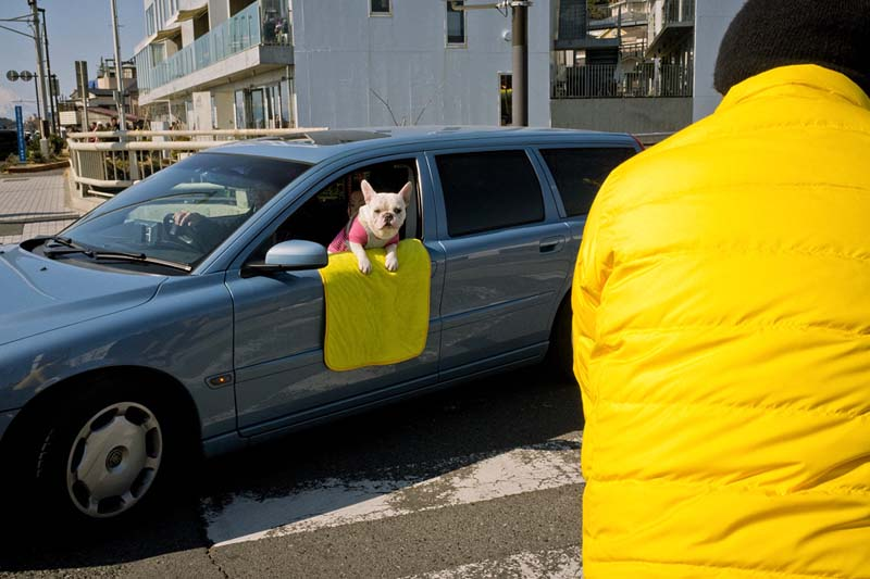 Fun street photography by Japanese street photographer Shin Noguchi
