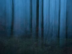 Francesca Solloway is an emerging landscape and fine art photographer from the UK