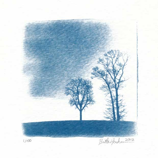 Britta Hershman called this image two trees
