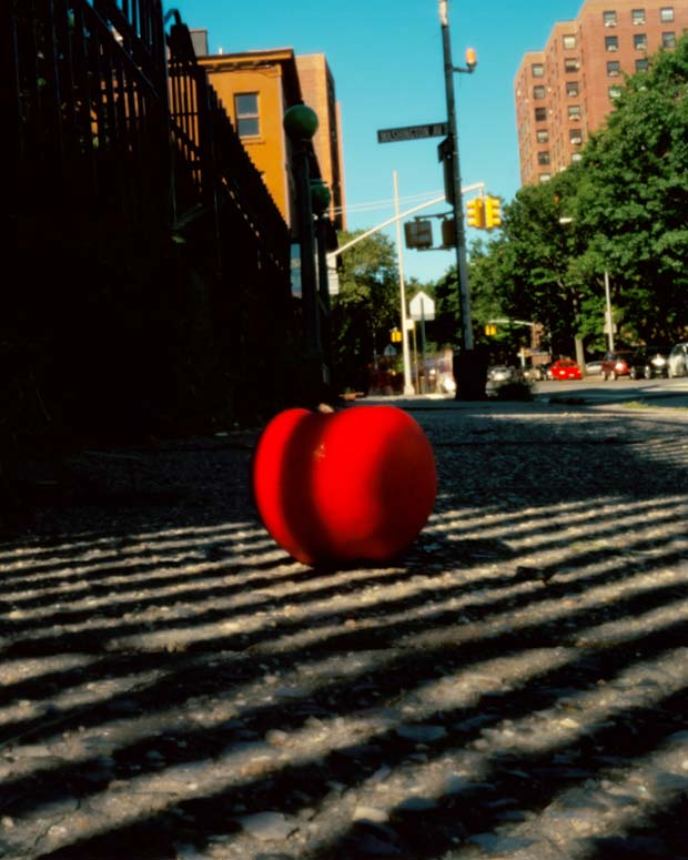 An apple on the street in the big apple New York captured by pinhole photographer Christian Finbar Kelly
