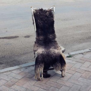 Image from the project Western China from John Francis Peters showing a furr covered chair on the street