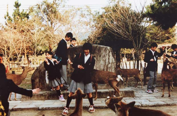Sean Lotman took a photograph of girls in a park with Nara Deer