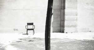 An image of an empty chair and a tree taken by Steven Taylor