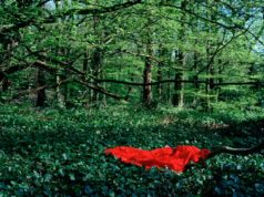 Image from the series If I Wake Up Before I Die from Portuguese photographer Teresa Sa Photography