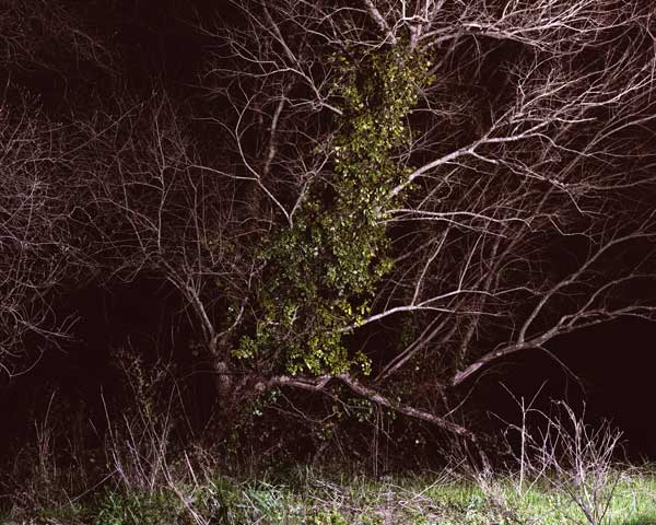 Image from the series Boas Noites from Jesús Madriñán photography