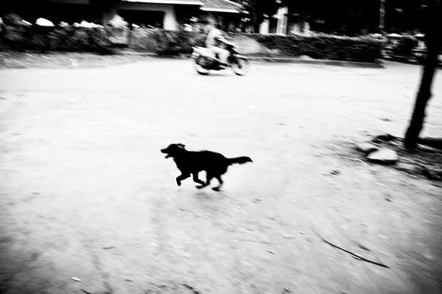 Image from street photographer Aji Susanto Anom