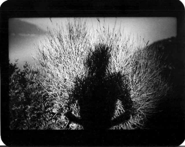 Giamcomo Brunelli Disappearing Into Nature Self-Portraits