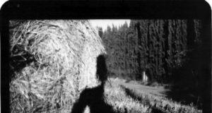 Giamcomo Brunelli Disappearing Into Nature Self-Portraits