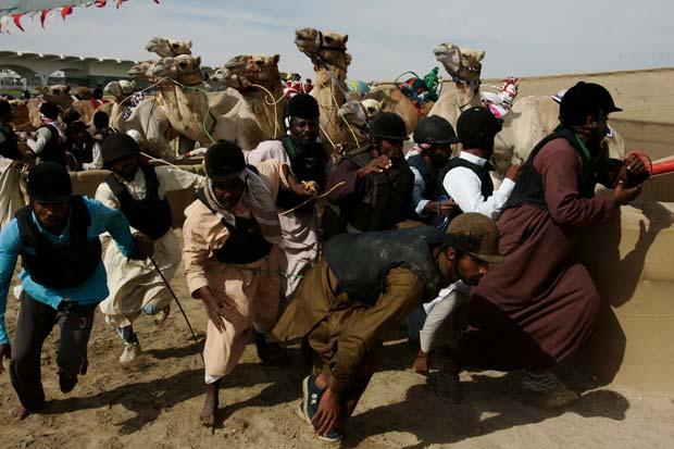 A camel race photographed by photojournalist Karen Dias