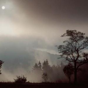 Image from Polish contemporary photographer Inez Baturo
