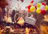 Gary D. Chapman (UK) - www.garydchapman.co.uk
