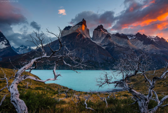 """David Köster is a German landscape photographer. He specialises in creating epic nature images with a dreamy atmosphere. His book """"Der Start in die Landschaftsfotografie"""" was recently published by Humboldt Verlag."""